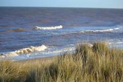 Grasartige Dünen, die Strand und Meer übersehen lizenzfreie stockbilder