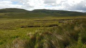 Grasartige Landschaft Skye stockbild