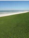 Grasartige Ozean-Ansicht Stockfoto