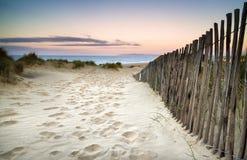 Grasartige Sanddünelandschaft bei Sonnenaufgang Stockbild