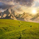 Grasartige Steigungen und felsige Spitzen zusammengesetzt bei Sonnenuntergang lizenzfreie stockfotografie