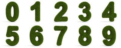 Grasartige Zahlen Stockbild