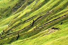 Grasartiger Hügel Stockbild