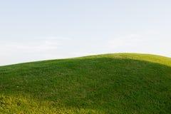 Grasartiger Hügel auf einem Golfplatz Stockbild
