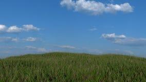 Grasartiger Hügel mit blauer Himmel-Hintergrund Stockfotos