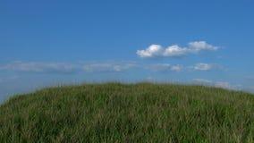 Grasartiger Hügel mit blauer Himmel-Hintergrund Stockfotografie