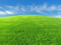Grasartiger Hügel Stockfotos