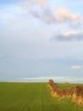 Grasartiges Feld und Himmel 2 Lizenzfreie Stockbilder