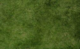 Grasbeschaffenheit des Fußballs Stockfotografie