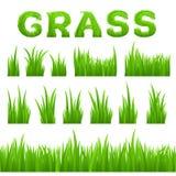 Grasbeschaffenheits-Gestaltungselementsatz auf weißem Hintergrund Sammlung grünes Gras des Vorfrühlings Lizenzfreie Stockfotos