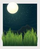 Grasblätter und Nachtmondvektorillustration Lizenzfreies Stockbild