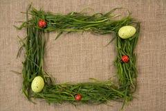 Grasfeld mit Eiern und Marienkäfern Stockfotos