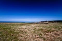 Grasfeld mit hellem blauem Himmel Stockbild