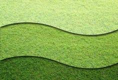 Grasfelder lizenzfreie stockbilder