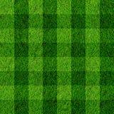Grasfeldhintergrund Stockbilder