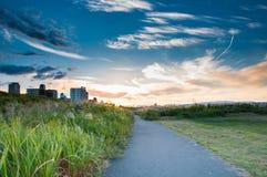 Grasgebied in de zonsondergang royalty-vrije stock afbeelding