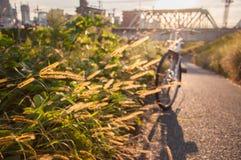 Grasgebied in de zonsondergang met fiets en spoorweg in backgr stock afbeeldingen