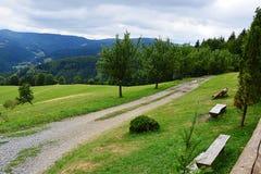 Grasgebied met gebiedsweg en houten banken dichtbij Dolni Lomna in Tsjechische Republiek tijdens de bewolkte recente zomer a Stock Afbeelding