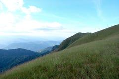 Grasgebied op de berg Royalty-vrije Stock Foto's