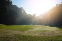 Grasgebied op heuvel in zonneschijn Royalty-vrije Stock Fotografie