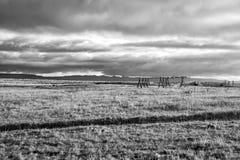 Grasgebied in reykjavik, IJsland De herfstlandschap op bewolkte grijze hemel Weer en Klimaat De herfstaard en ecologie royalty-vrije stock foto