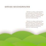 Grasgrünhintergrund stock abbildung