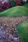 Grasheuvel bij de herfstpark stock fotografie