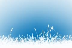 Grashintergrund Stockbild