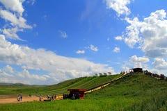 Grasland-Ansicht an einem sonnigen Tag Lizenzfreies Stockfoto