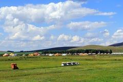 Grasland-Ansicht an einem sonnigen Tag Stockfotografie