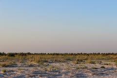 Grasland auf der unbewohnten Insel Lizenzfreies Stockfoto