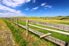 Grasland Fenceline South Dakota lizenzfreies stockbild