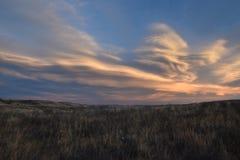 Grasland-Himmel im Winter Stockfotos