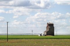Grasland-Landschaft Lizenzfreie Stockfotos