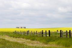 Grasland-Landschaft - Zaun-Zeile stockbild