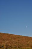Grasland nahe Irazu-Vulkan lizenzfreie stockbilder