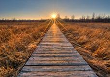 Grasland-Promenaden-Sonnenuntergang lizenzfreie stockfotografie
