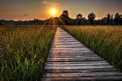 Grasland-Promenaden-Sonnenuntergang lizenzfreies stockbild