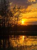 Grasland-Sonnenuntergang Stockbild