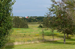 Grasland-Waldland und Bauernhof in Chaska stockfotos