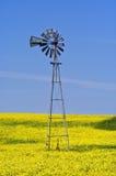 Grasland-Windmühle Stockbild