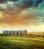 Graslandkornsilos im Spätsommer Stockfotografie