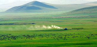 Graslandlandschaft Stockfotos
