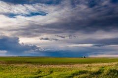 Graslandlandschaften lizenzfreie stockfotos
