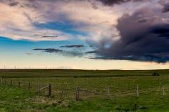 Graslandlandschaften lizenzfreies stockfoto