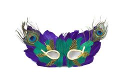 Grasmasker van Mardi stock foto's