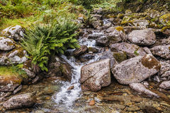 Grasmere鳃-流动从往Grasmere村庄的小山边的瀑布在湖区 免版税库存照片