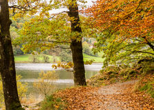 Grasmere lake Stock Photography