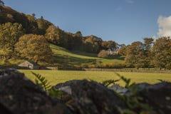 Grasmere, Meerdistrict, Cumbria - weiden, bomen en een omheining royalty-vrije stock foto