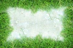 Grasrahmen-Weißhintergrund Lizenzfreie Stockbilder